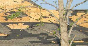 Roof Repairs Tilbury Ontario